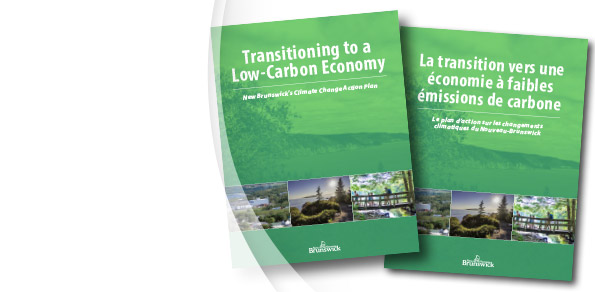 Transitioning to a Low-Carbon Economy